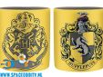 Harry Potter set van 2 espresso mokjes Slytherin & Hufflepuff