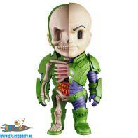 te koop, nederland, winkel, DC Comics XXRAY Lex Luthor figuur 10 cm