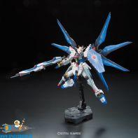 Gundam Real Grade 14 Strike Freedom Gundam