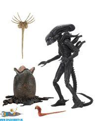 amsterdam , action, figure, store, Alien actiefiguur 1979 Alien Big Chap 25 cm