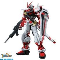 Gundam Astray Red Frame 1/60 pg