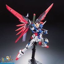 Gundam Real Grade 11 Destiny Gundam