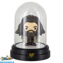 Harry Potter mini lampje Hagrid