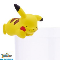 Pokemon Putitto Pikachu slapend