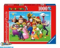 Super Mario puzzel groep